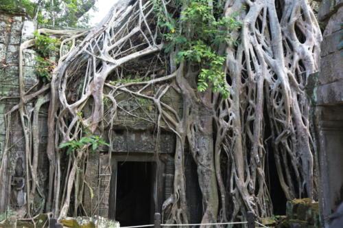 "Kambodża - plan zdjęciowy filmu ""Tomb Raider"""